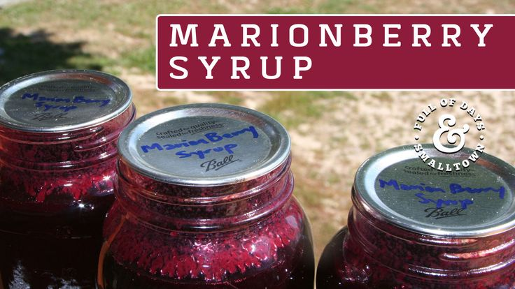 MARIONBERRY SYRUP RECIPE: arionberries make delicious preserves, pies, cobblers and syrup. Marionberry jam is one of my very favorites (second only to my mom's raspberry jam!).