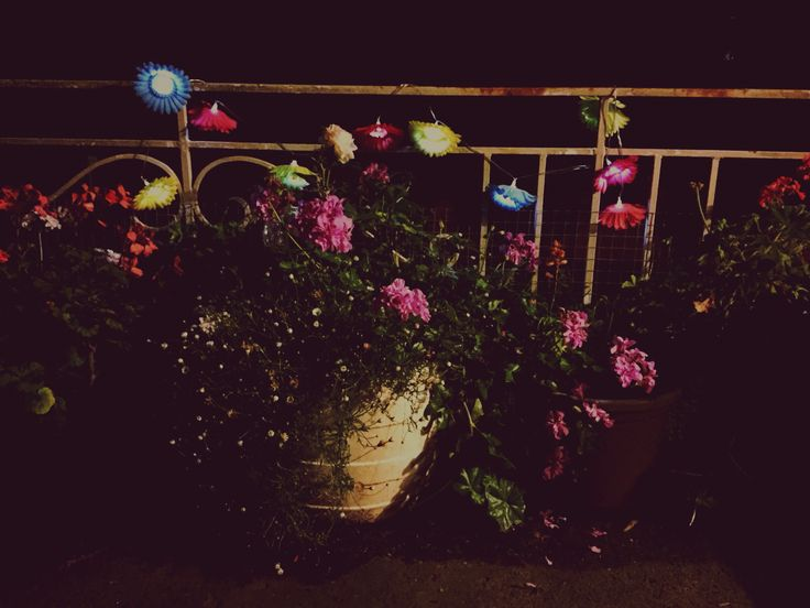 My nighttime porch.