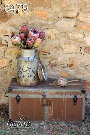 protea vintage suitcase - Google Search