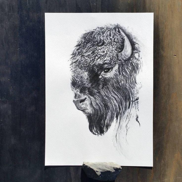 Buffalo by ellaquaint 2016 Charcoal on watercolour paper http://ellaquaint.com/
