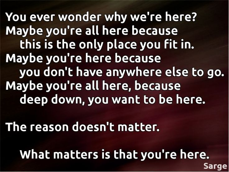 Red vs Blue Sarge quote.