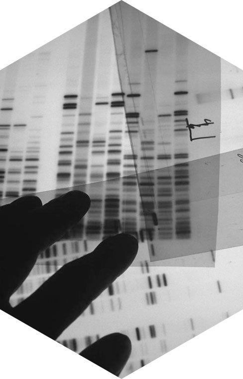 Genoxage Exclusive Genetics #skincare #skinaging #cosmetics #skin #diagnosis #genetics #customized #DNA http://www.genoxage.com/