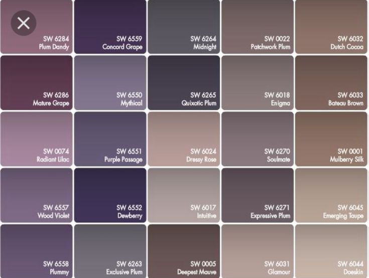 Color Scheme For Little Girls Room Purple And Grey Walls