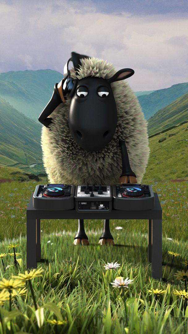 Gąski idą w odstawkę, nadchodzi czas owiec 3:) 3:)  #ekipazcardiff