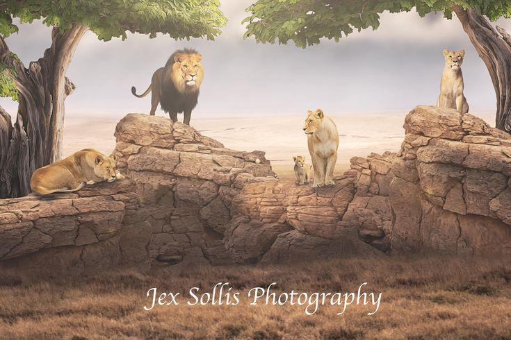 Everything the light touches is our Kingdom.   #lionking #digitalbackdrop #digitalbackground #photography #photoshop #lions #composite