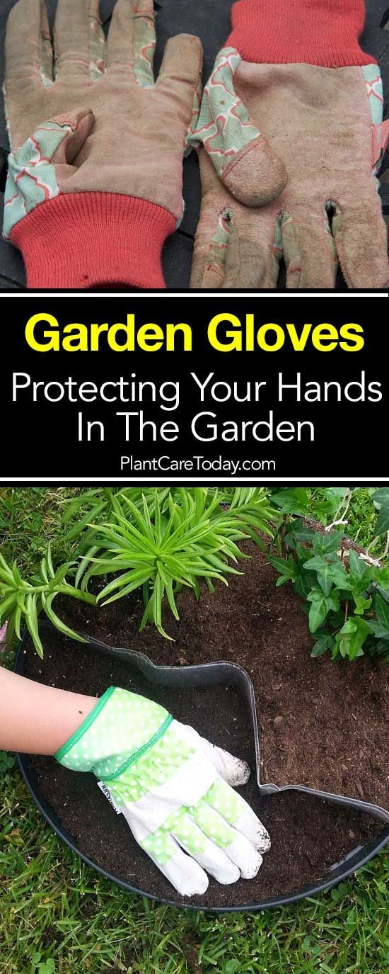 Garden Gloves – How To Protect Your Hands In The Garden – Raised Bed Gardens