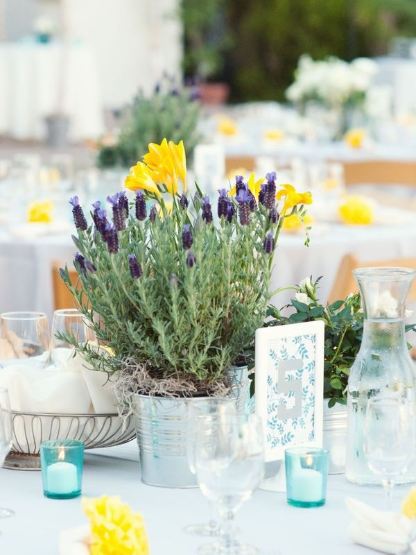 Centerpieces potted lavendar with little splashes of