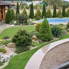 Backyard Landscape and garden design