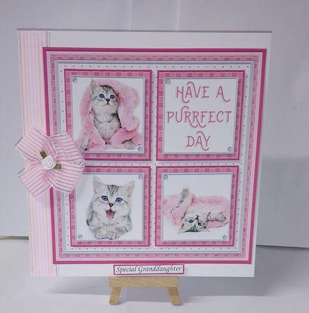 MIXED ANIMALS BUMPER KIT Quick Layer Cards & Word Kits - CUP872312_68   Craftsuprint