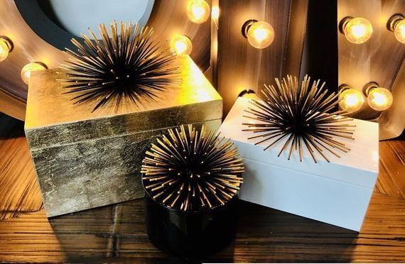 Seashell Box Black Round Box Round Black lacquer box with silver urchin