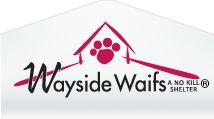 Survey - Volunteer Inquiry - Wayside Waifs Events