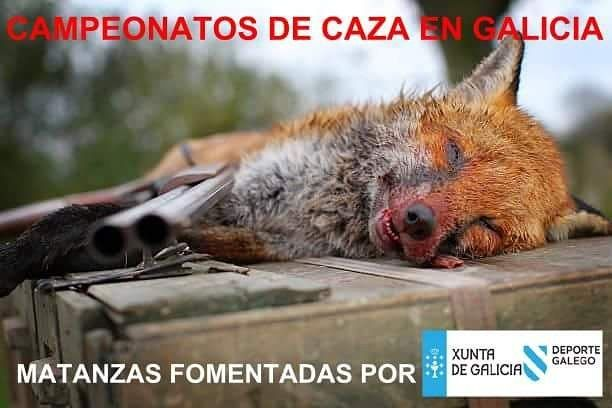 @Xunta @XuntaVice @PartidoPACMA @plataforma_NAC @Equo @EQUOAnimales @EQUOEuropa  #Difunde en #LealesOrg una #adopción y #adopta o sé #acogida para #AdoptaNoCompres O un #SeBusca de #perro o #gatos; #perdido o #ENCONTRADO para #NoAlMaltratoAnimal  https://www.instagram.com/p/Be44YolhJ4n/ https://scontent.cdninstagram.com/vp/07d3070951b1632e6530664b5ba4de8c/5B011206/t51.2885-15/e35/27580495_589384878088622_4528305078121005056_n.jpg