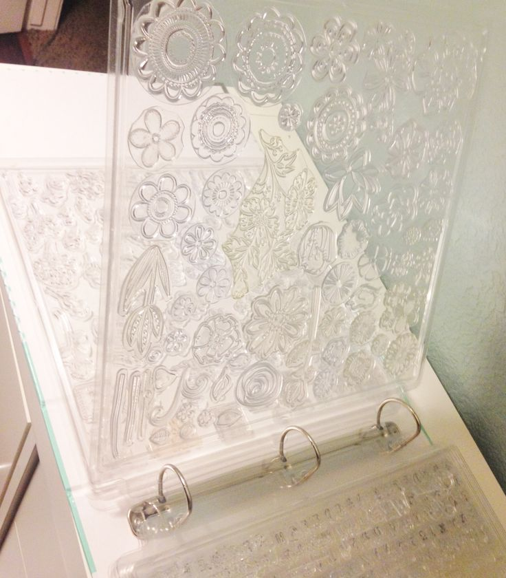 THIS IS A GREAT IDEA. THIS IS A 12X12 CLEAR STAMP STORAGE SYSTEM BY INKZ BOUTIQUE(sp) . SHE GETS THE PAGES AT JOANNES FOR 4.00 ON SALE MOST OFTEN.