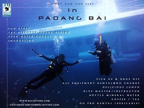 what can you see in Padang Bai? many things! you can get the #discount if 2 persons or more.  www.balidiving.com #submarine #balidiving #padangbai #fundives #wreckship #thebest
