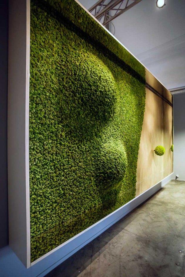Ideas about moss wall on pinterest living walls