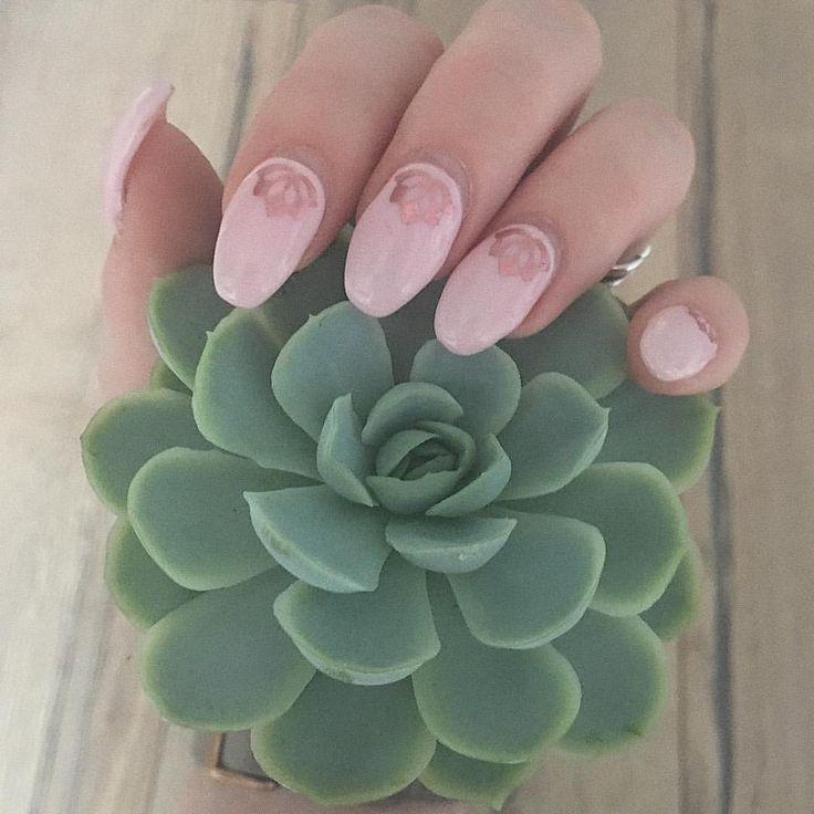 💕🎀 In der Hand eine Sukkulente und auf den Nägeln Lotusblüten 🎀💕 #loreal #lorealparis #220dimancheapresmidi #nagellack #nailpolish #nagellacksucht #nagellackliebe #nailstagram #gelnails #gelnägel #gelnägelselbstgemacht #nailpolishaddict #nailsoftheday #nailsonfleek #nailsoninstagram #nailsonpoint #lotusblüte #lotusflower #sukkulenten #succulents #lolasucculent
