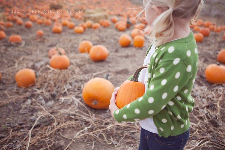 5 Quick Tips for Capturing Beautiful Fall Photos