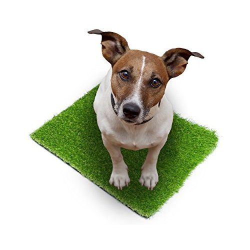 """SavvyTurf Premium Artificial Turf Rug 20"""" x 24"""" (Other Sizes Available) - Artificial Grass for Indoor Outdoor Carpet - Non-toxic Synthetic Fake Grass Mat with Rubber Back and Drainage Holes"""