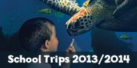 Situated right on the sea-front next to Brighton's iconic pier, SEA LIFE Brighton is the world's oldest operat...