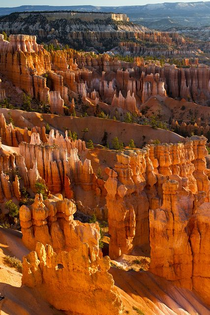 Bryce Canyon National Park, Utah; this blew me away more than the Grand Canyon and you can hike through it fairly easily.