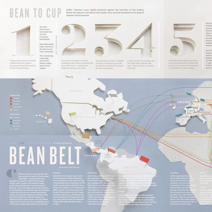 paper infographic by Kelli Anderson