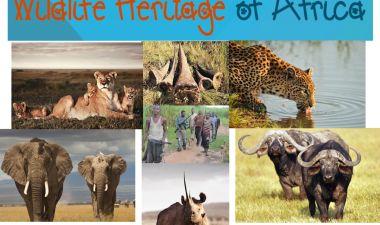 Wildlife Heritage of Africa - Ref no. P7 | Generosity