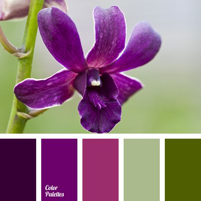 Color Palette #2893 (Color Palette Ideas)