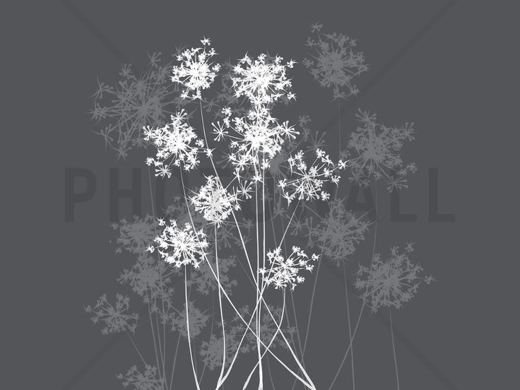 Dandelion Grey - Wall Mural & Photo Wallpaper - Photowall