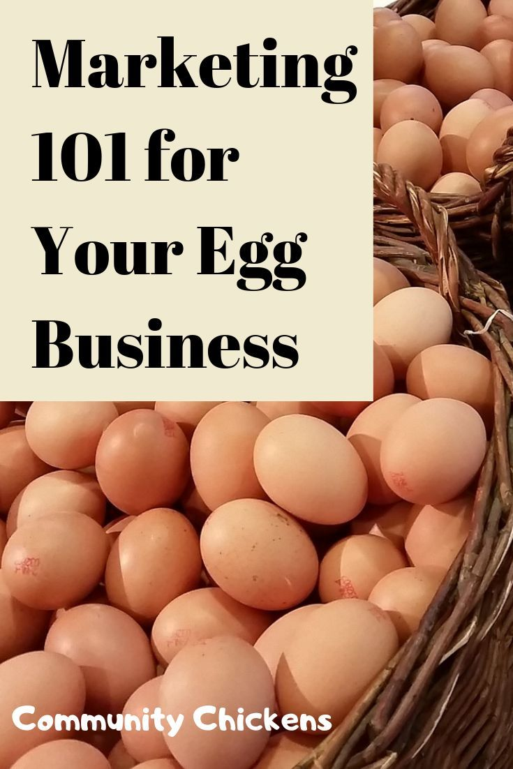 If You Sell Eggs Or Want To Start You Need These Marketing Tips It Takes More Than Hanging A Sign On Your Front Gate Selling Eggs Eggs Chickens