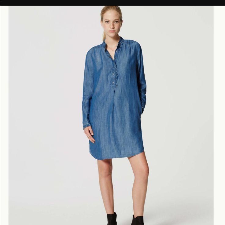 petite-chambray-shirt-dress-grils-full