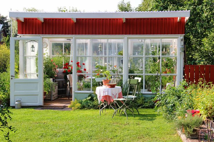 Greenhouse in august