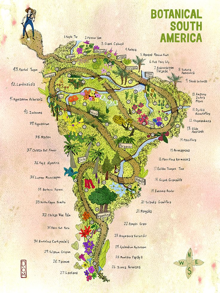 Best Maps Images On Pinterest Cartography Travel And Geography - Stylized us state map infographic rough