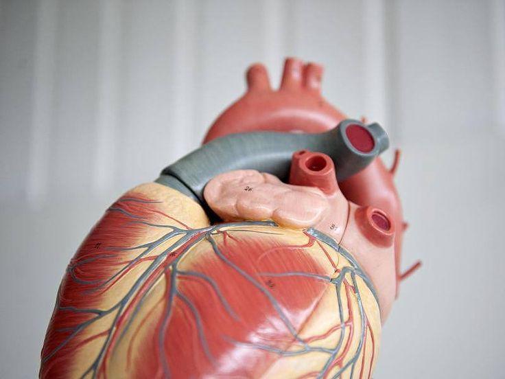 Die Störung gebrochenes Herz tritt plötzlich ein – nach emotionalen Belastungen wie Mobbing am Arbeitsplatz oder finanziellen Sorgen. Die Symptome dieser Erkrankung ähneln einem Herzinfarkt. Beide Krankheiten können tödlich verlaufen.