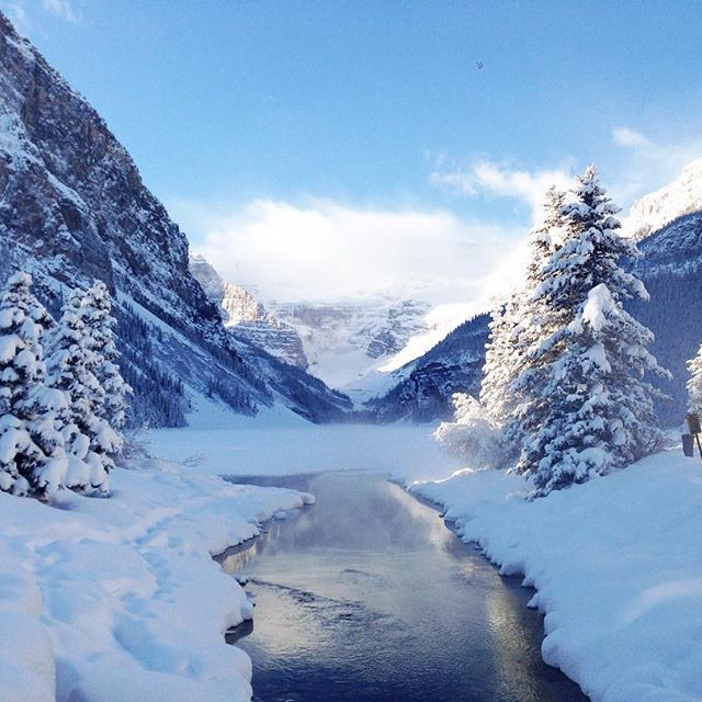 Its a winter wonderland in Canada right now. Have you visited yet? #travelphotography #travel #canada #canada150 #travelalberta #lakelouise #winter #snow #exploretheworld #iamcanadian #aworldwithyou
