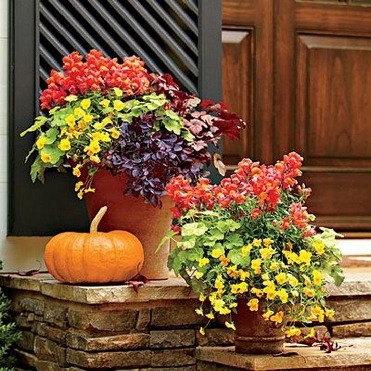 46 Amazing Colorful Garden Ideas – Page 18 of 46 – Front porch