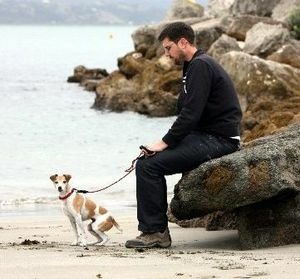 Napier City Council staff are mystified as to how a dog being walked on a small beach at Ahuriri managed to chomp on bait set to contain a rat problem in the area.