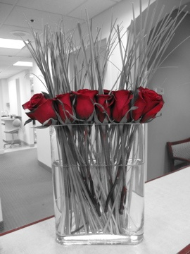 valentines day flowers in my office =)