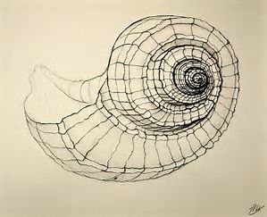 Image result for Cross Contour drawings