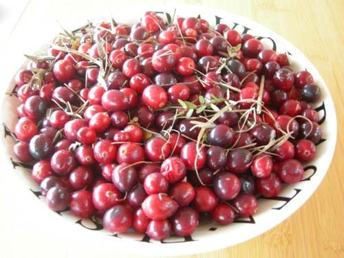 Cranberries van Terschelling