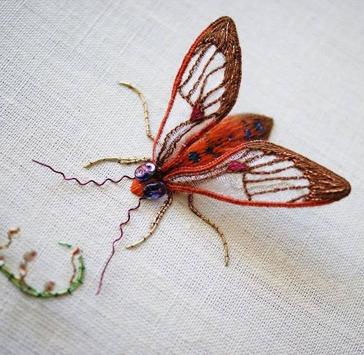 I ❤  stumpwork . . . Tropical Moth in Stumpwork ~By Laura Baverstock (Courtesy of Royal School of Needlework