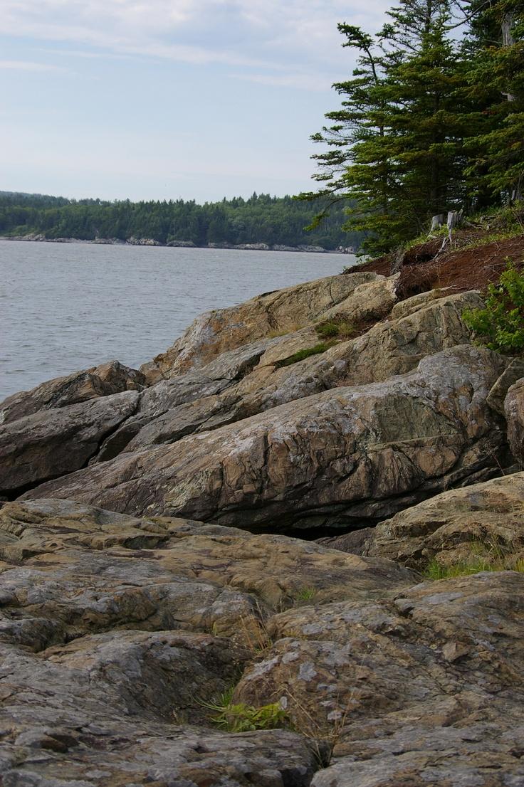 Irving Nature Park, Saint John, New Brunswick