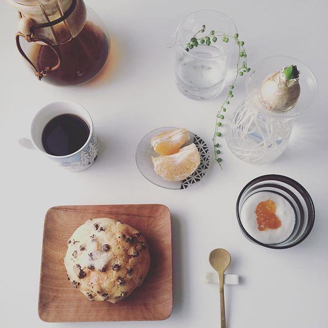 2017/01/17 09:24:23 taako_hibi おはようございます☺︎ 我が家のヒヤシンスは成長が遅め。 ちゃんと花まで咲いてくれますように☆ 温め直したチョコメロンパンで今日は朝ご飯。 * * * #朝ご飯#朝食#朝時間#メロンパン#リベイク#バルミューダ#ヨーグルト#ポンカン#果物#フルーツ#コーヒー#ケメックス#山口和宏 さん#辻和美 さん#アラビア#ムーミン#うつわ#器#真鍮カトラリー#花のある暮らし#さこうゆうこ さん#keinoglass#ヒヤシンス#グリーンネックレス#日々#暮らし#シンプル