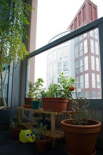 Best 25+ Apartment balcony garden ideas on Pinterest | Small ...