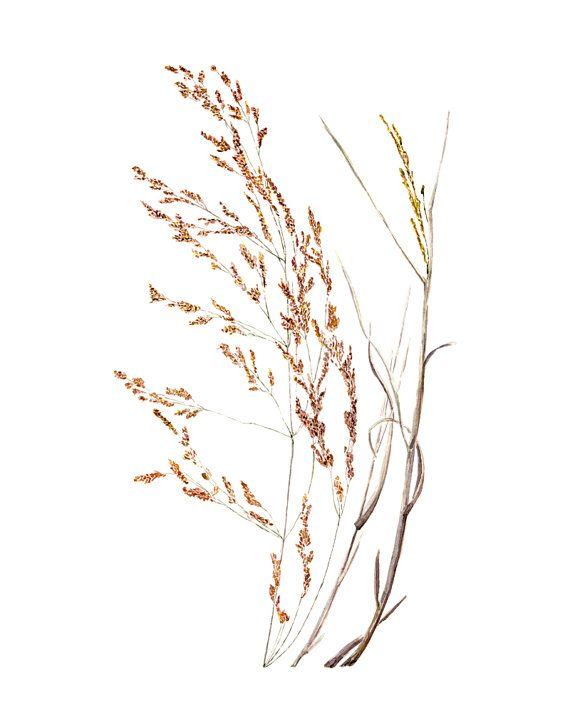 Brown Grass Watercolor Print by ImaginaryNature on Etsy