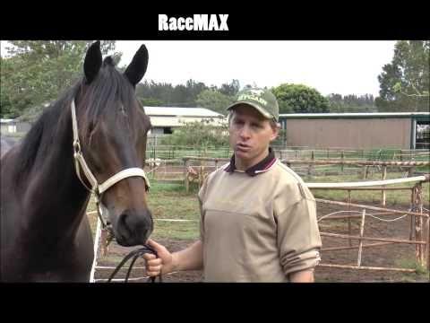 RaceMAX - wozenphotonictherapy.com