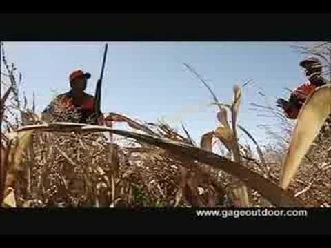South Dakota #Pheasant #Hunting | Lodges, #Outfitters & Guides | Thunderstik Lodge