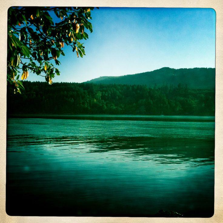 Salt Spring Island, BC. copyright Jacqueline Auvigne