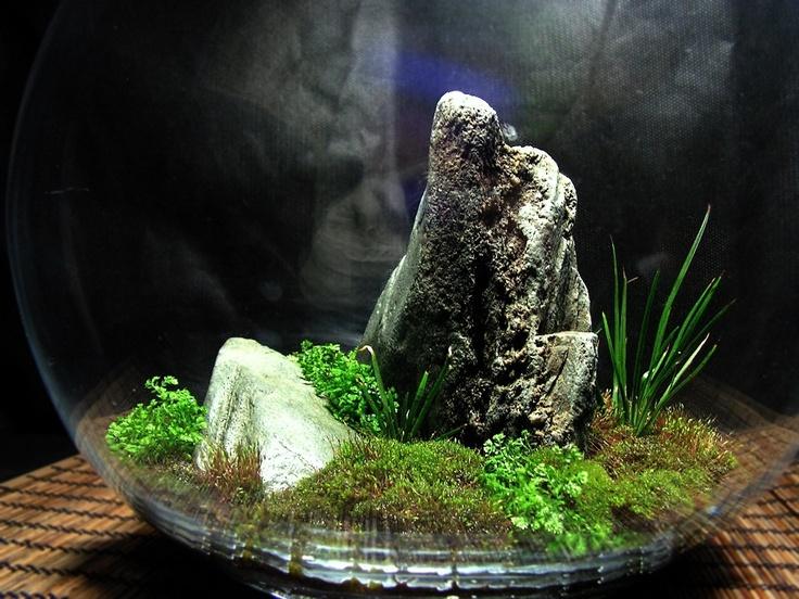 http://www.facebook.com/kusamono