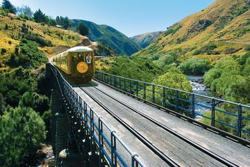 dunedin-shore-excursion-taieri-gorge-railway-and-the-otago-peninsula-in-dunedin-371465.jpg (360×240)