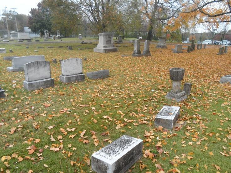 Autumn 2012 Evergreen